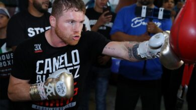 Photo of Canelo Net Worth, Career Earnings, Alvarez